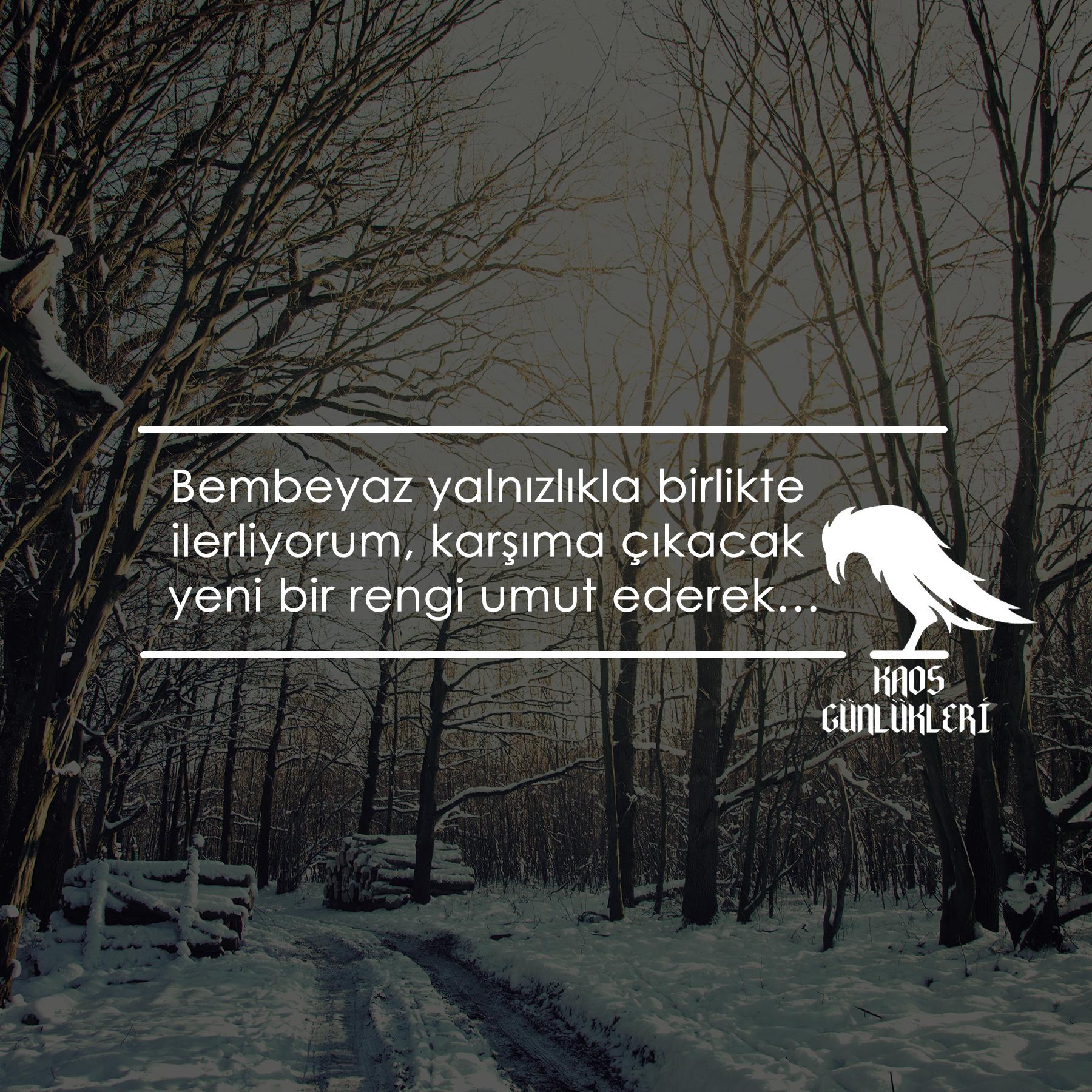 karlı_orman