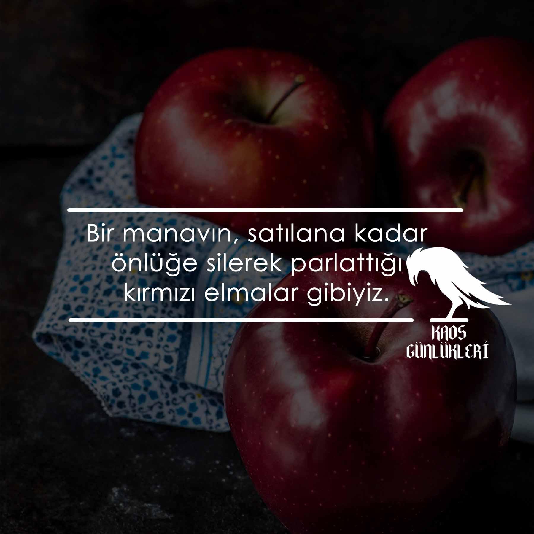 kırmızı elmalar